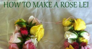 How to make a rose lei