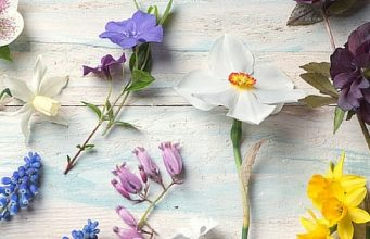 5 Ways To Rejuvenate Your Home For Spring