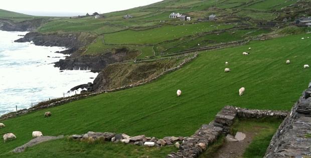 Dingle Ireland Go hippie Chic
