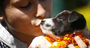 girl giving a puppy a kiss on the dog festival
