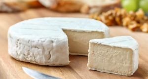 Vegan Cheese Recipes